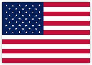 us fahne 300x214 - Die USA stellen am dritten Tag in Folge mit über 69.000 neuen COVID-Fällen Rekord auf